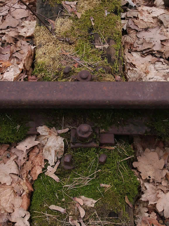 Photo: Rail Track, Dreilinden