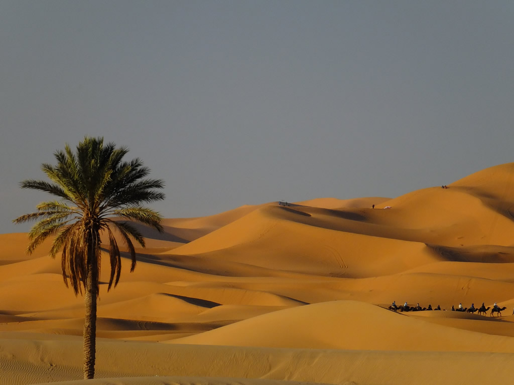 Photo: Sahara Desert, Merzouga